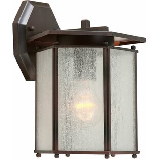 Shopping for Mable 1-Light Outdoor Wall Lantern By Charlton Home