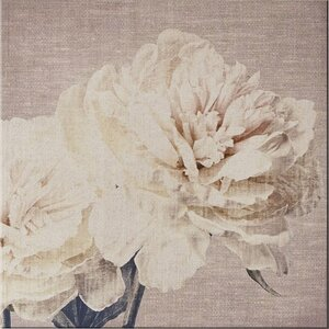 'Petals' Graphic Art on Wrapped Canvas by Lark Manor