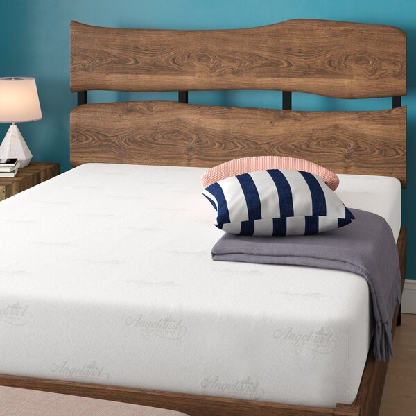 Luxury 10 Medium Memory Foam Mattress by Alwyn Home