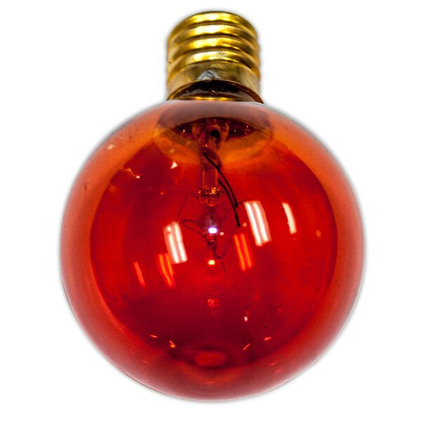 Thomas Incandescent Light Bulb (Pack of 12) by Alcott Hill