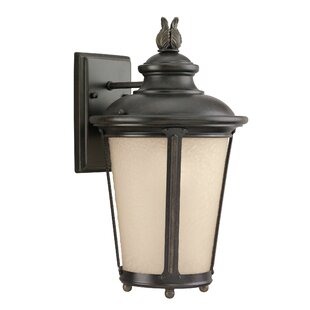 Affordable Maria 1-Light Outdoor Wall Lantern By Fleur De Lis Living