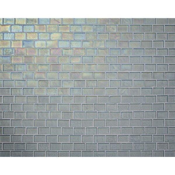Studio 0.88 x 1.38 Glass Mosaic Tile in Clear by Kellani