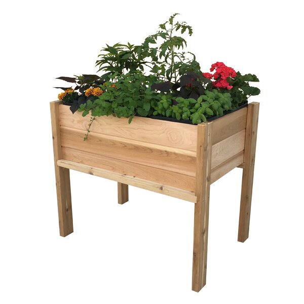 Plantables™ Cedar Raised Garden by Gro Products