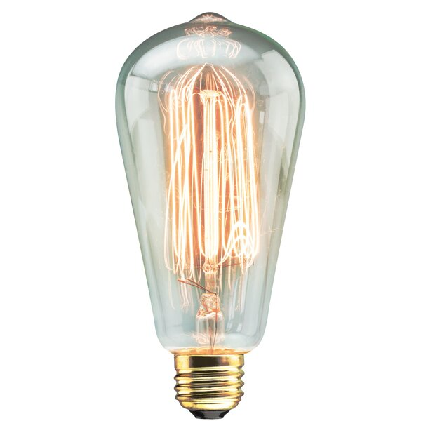 60W Vintage Filament Light Bulb by TransGlobe Lighting