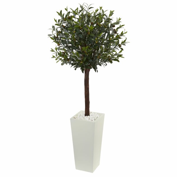 Olive Ficus Topiary in Tower Planter by Fleur De Lis Living