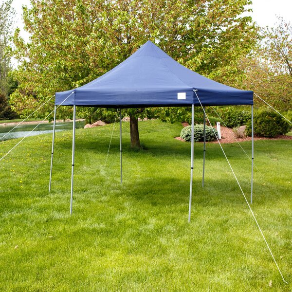Alvah 12 Ft. W x 12 Ft. D Steel Pop-Up Canopy by Freeport Park