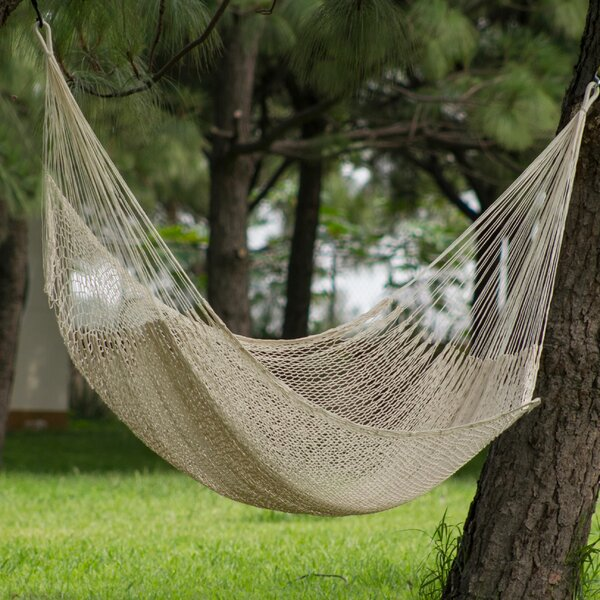 Amandeep Maya Cotton Tree Hammock by World Menagerie World Menagerie