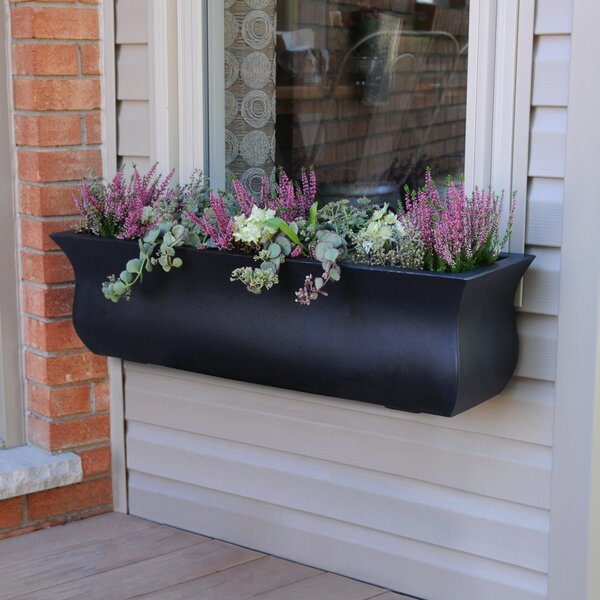 Valencia Self Watering Plastic Window Box Planter by Mayne Inc.