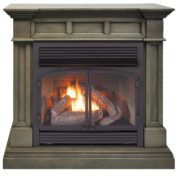 Vent Free Propane/Natural Gas Fireplace By Duluth Forge