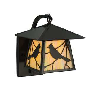 Price Check 1-Light Outdoor Wall Lantern By Meyda Tiffany