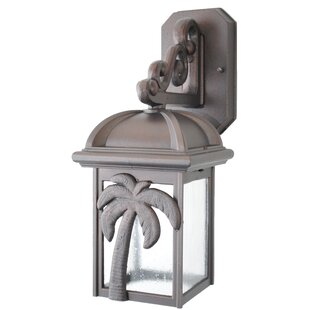 Find the perfect Penfield 1-Light Outdoor Wall Lantern By Alcott Hill