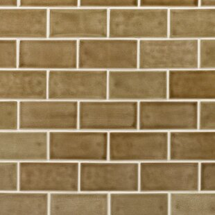 Oracle 3 X 6 Ceramic Subway Tile In Firna