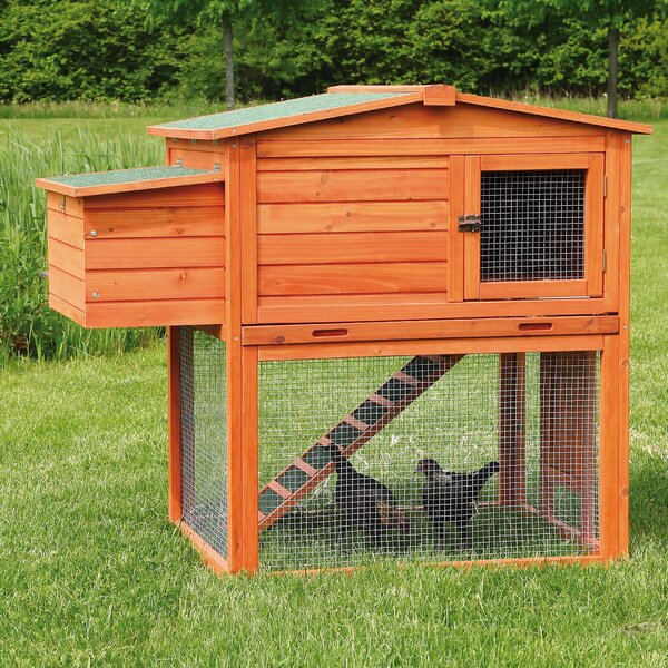 Madeleine Chicken Coop/House with Outdoor Run by Tucker Murphy Pet