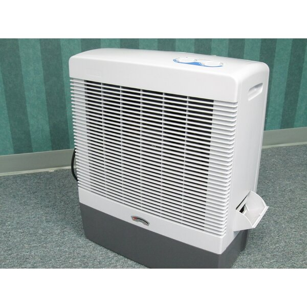Evaporative Cooler by Riverstone Industries