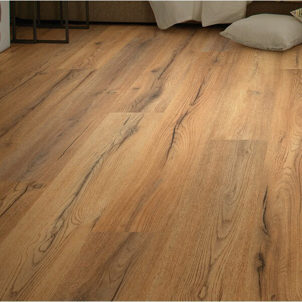 Sandscapes 8 x 54 x 6mm Laminate Flooring in Linen by Shaw Floors