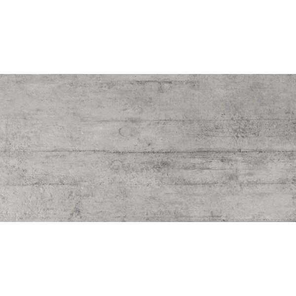 Cemento Novara 12 x 24 Porcelain Field Tile in Gray by MSI