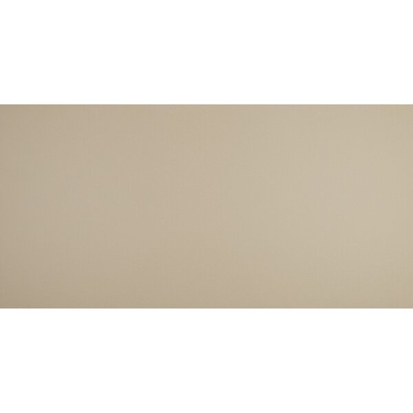 Aledo 24 x 48 Porcelain Field Tile in Mode Beige by Itona Tile
