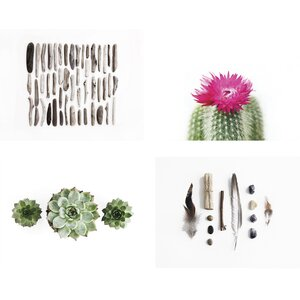 Nature 4 Piece Photographic Print Set (Set of 4) by Kindred Sol Collective