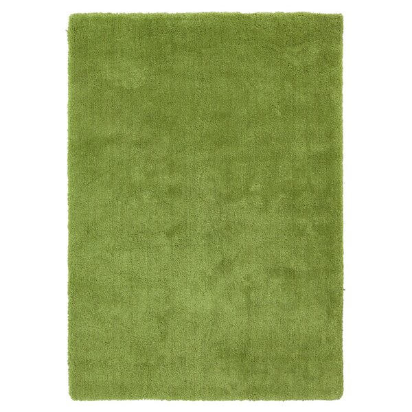 Braun Hand Woven Fern Green Area Rug by Rosdorf Park