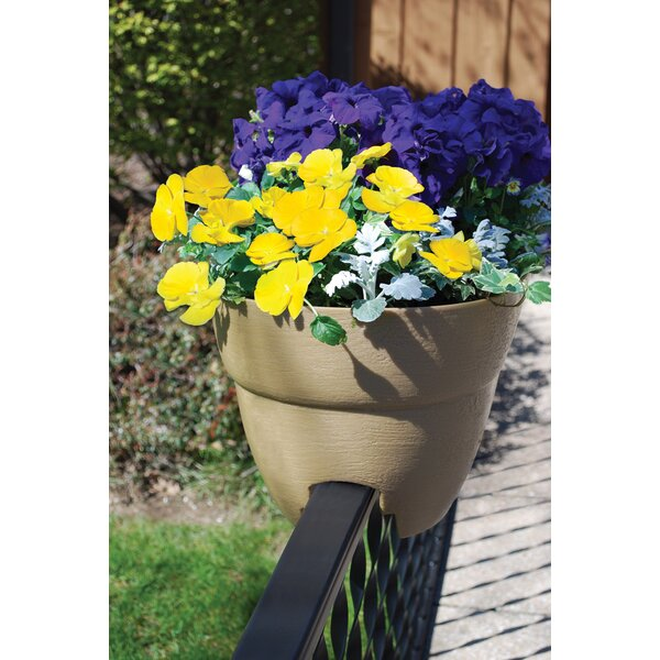 Bloomers Self Watering Plastic Rail Planter by EMSCO Group