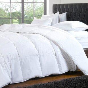 Noil Silk-filled Comforter ByAlwyn Home