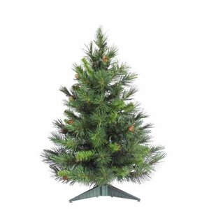 christmas trees birch lane - Pine Christmas Tree