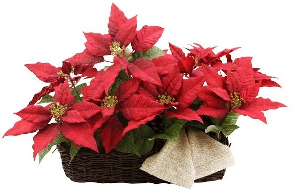 24 Christmas Poinsetta Floral Wicker Basket by Tori Home