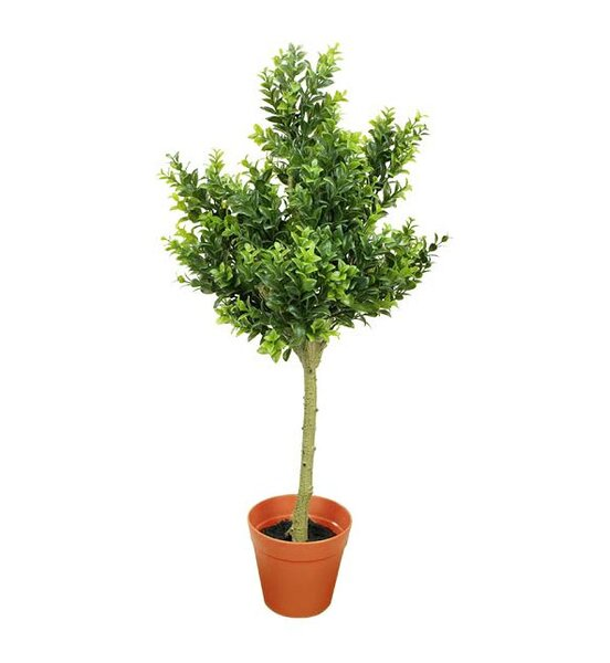 Two-Tone Artificial Sweet Grass Tree in Pot by Northlight Seasonal