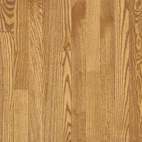 Dundee 3-1/4 Solid White Oak Hardwood Flooring in Seashell by Bruce Flooring