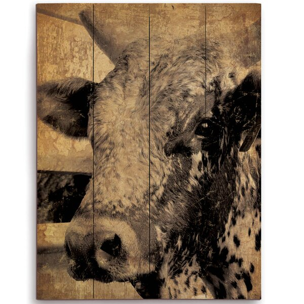 Cow Graphic Art on Plaque by Click Wall Art