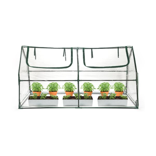 3 Ft. W x 6 Ft. D Mini Greenhouse by Trademark Innovations