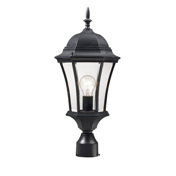 Lyles Outdoor 1-Light Lantern Head by Astoria Grand