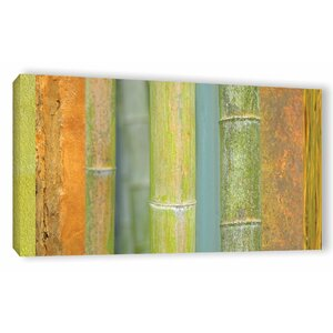 Bamboo Graphic Art on Wrapped Canvas by Bay Isle Home