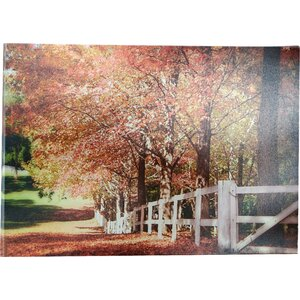 'Autumn Moods' Photographic Print by Trademark Global