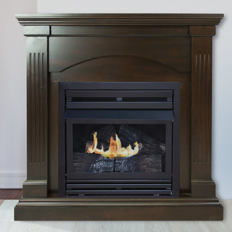 Darby Home Co Shavonne Vent Free Fireplace Wayfair