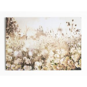 'Layered Meadow Landscape' Photographic Print on Wrapped Canvas by Latitude Run