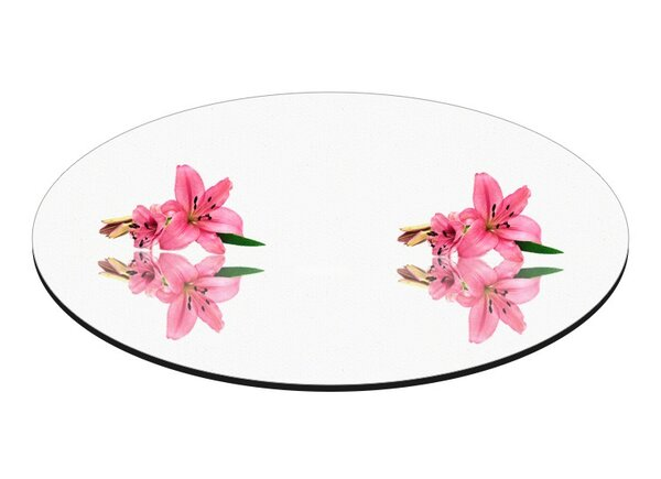 Round Centerpiece Mirror Plate (Set of 10) by Fab