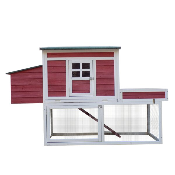 Basil Chicken Coop with Display Top, Run Area and Nesting Box by Archie & Oscar