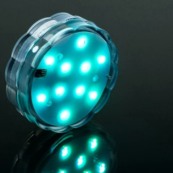 Submersible 10 LED Bulbs Lighting Accessory by The Holiday Aisle