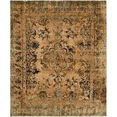 8 X 10 Brown Amp Tan Rugs You Ll Love In 2019 Wayfair