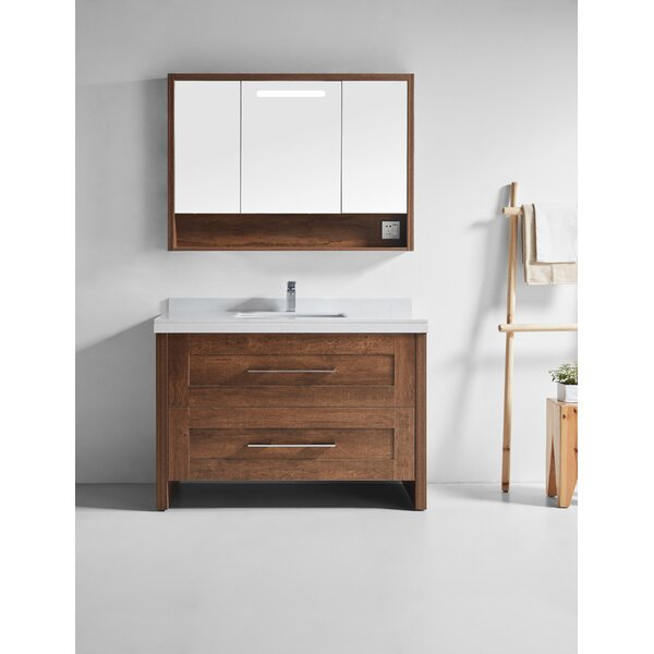 Dowell 48 Single Bathroom Vanity Set with Mirror by Brayden Studio