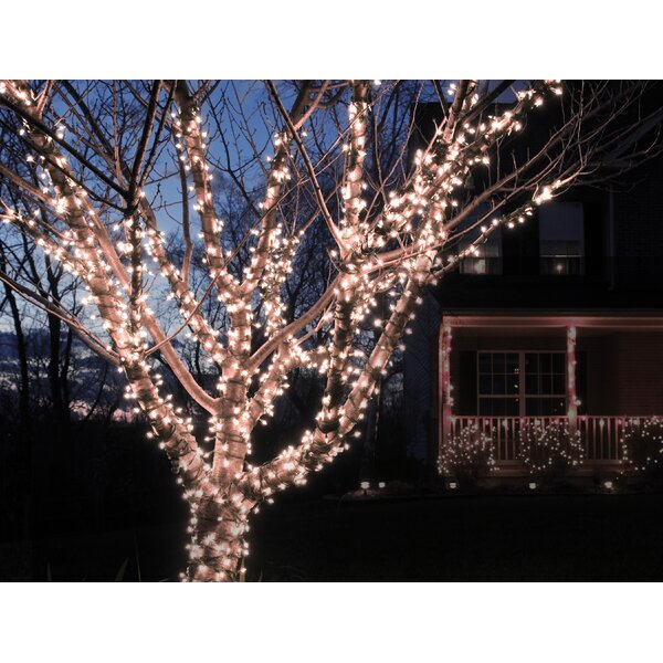 Liteup 100 Solar String Lights by The Holiday Aisle