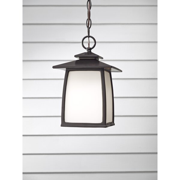 Bridgwater 1-Light Outdoor Hanging Lantern by Darby Home Co