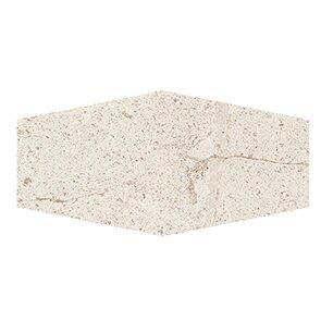 Costal Forest 9.5 x 19.25 Porcelain/Stone Field Tile in Beige by Kellani