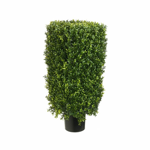 Rectangle Boxwood Topiary in Pot by Tori Home
