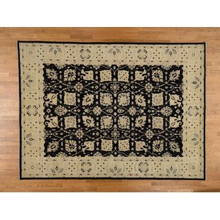 Order One-of-a-Kind Beaumont Oriental Hand-Knotted 8'10 x 12' Wool Black/Beige Area Rug By Isabelline