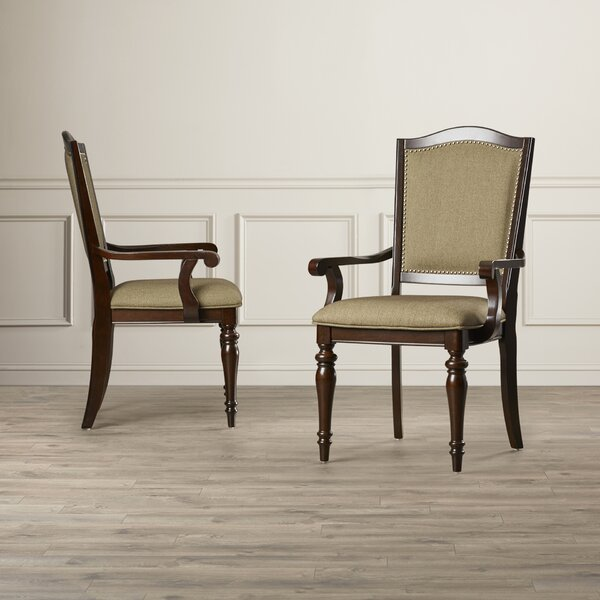 Rheems Arm Chair (Set of 2) by Alcott Hill