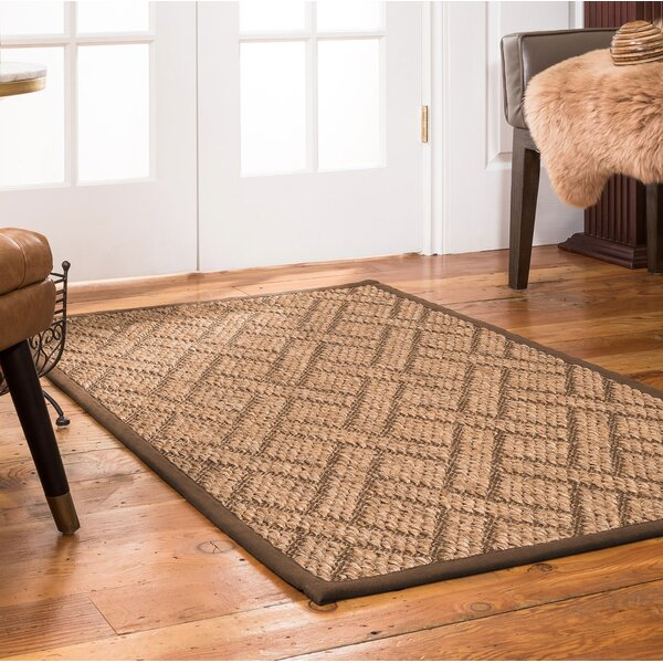 Tempo Hand Crafted Brown Area Rug by Natural Area Rugs