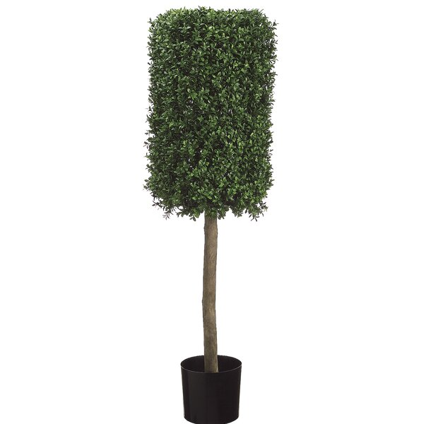 Rectangular Boxwood Topiary in Pot by Darby Home Co