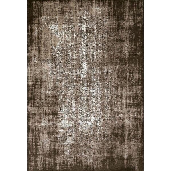 Dark Brown Area Rug by United Weavers of America